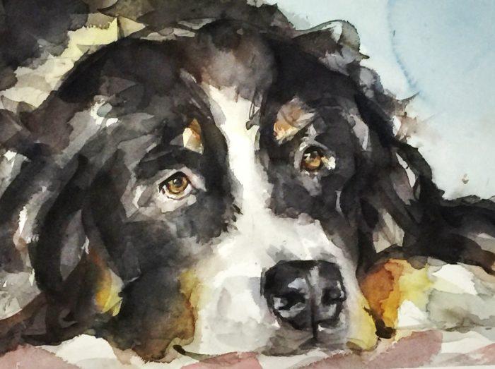 Acuarela de la cara de un perro